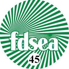 FDSEA45